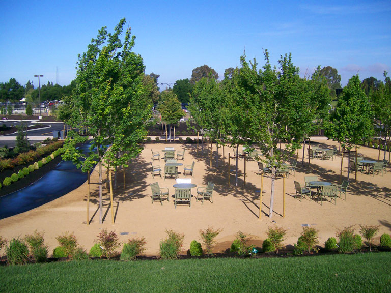 Bosque Landscaping - Pacific Coast General Engineering